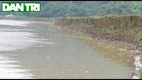 Cát tặc hoành hành trên sông Lam