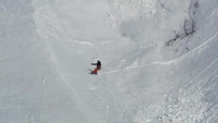 Ấn tượng khoảnh khắc thỏ con băng qua vùng tuyết lở