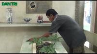 """Người canh """"giấc ngủ"""" cho hàng trăm nghệ sĩ tại Sài Gòn"""