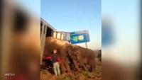 """""""Hiệp sỹ"""" voi lấy thần mình đỡ xe tải lật trên đường cao tốc"""