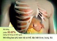 Quá trình tích tụ mỡ trắng vùng bụng và nội tạng.