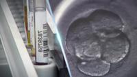Cơ chế tác động của UC-II lên hệ miễn dịch và sụn khớp