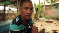 Gặp người bảo tồn và nâng tầm giá trị chó Phú Quốc Việt Nam
