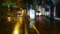 """Hà Nội: Cây đổ chắn ngang đường, phương tiện phải """"trèo"""" lên vỉa hè"""