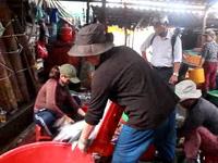 Bình Định: Những phận nữ nhọc nhằn mưu sinh ở lò hấp cá
