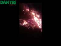 Cháy rừng thông nhiều năm tuổi xuyên đêm.