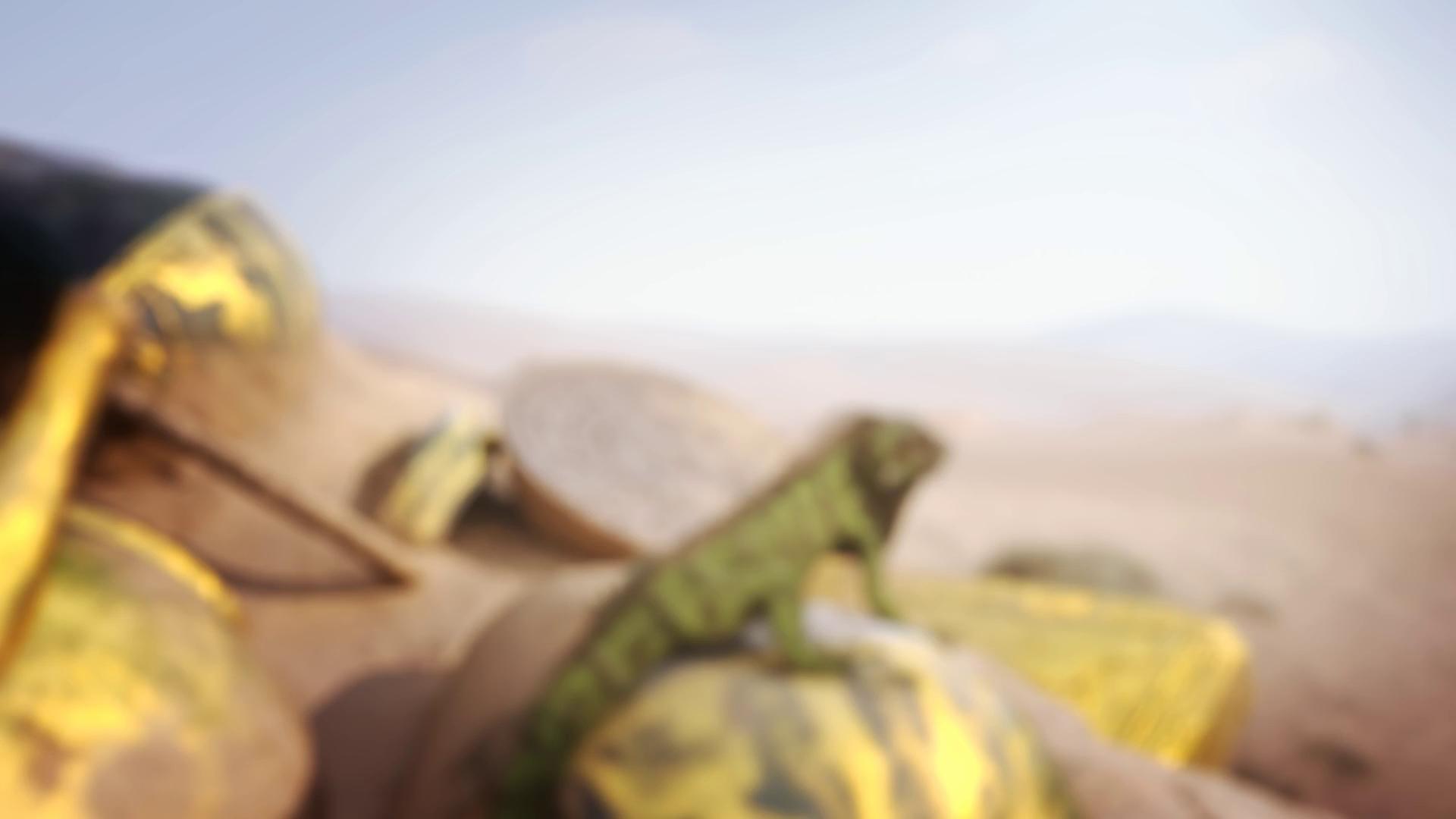 Gunpie Adventure - Bom tấn FPS siêu đẹp, siêu chất đã được Nexon phát hành - ảnh 2