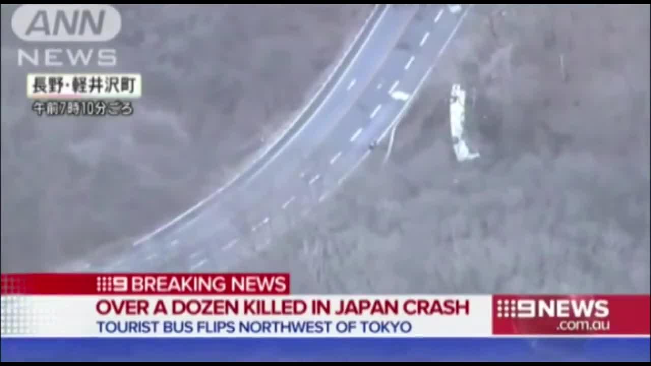 Xe du lịch lật nhào trên núi Nhật, 14 người chết