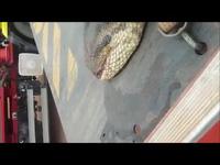 Cần cẩu xúc con trăn khổng lồ nặng nửa tấn dài 10m