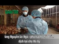 """Hà Nội """"dựng thành"""" vây chợ Hà Vỹ chống dịch cúm gia cầm"""