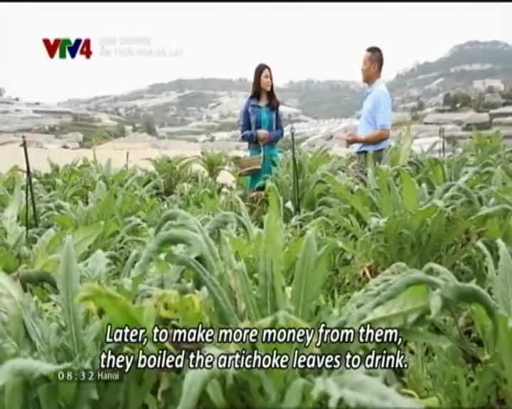 Fine Cuisine: Taste of nature in Da Lat