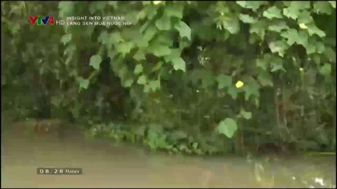 Insight into Vietnam: Lang Sen in the flooding season
