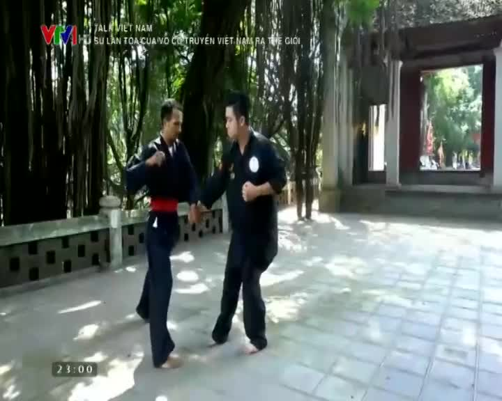 Talk Vietnam: The growth of of the Vietnam's traditional martial arts in the world