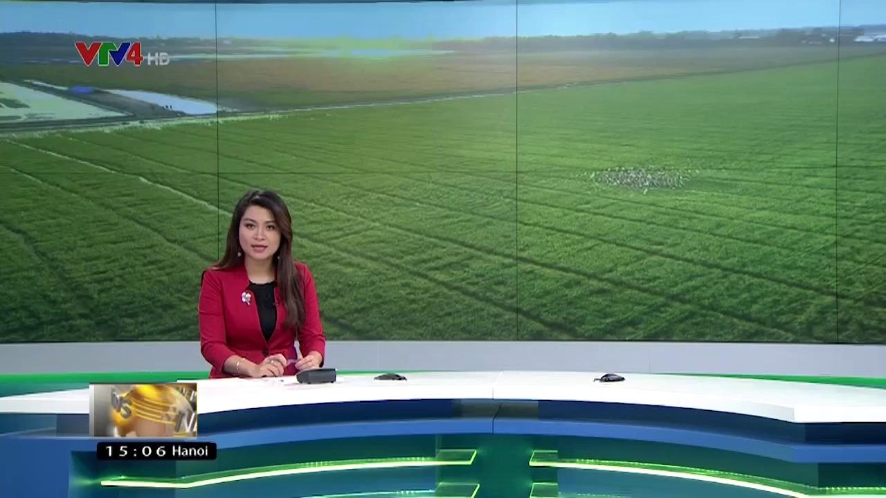 News 3 pm - 02/21/2017