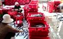 """Được """"lộc biển"""", ngư dân Nam Trung Bộ bỏ túi trăm triệu mỗi chuyến ra khơi"""