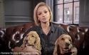 Nghệ sĩ quốc tế vận động chấm dứt lễ hội ăn thịt chó ở Trung Quốc