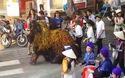 2 chú lân truyền thống Nhật Bản đùa giỡn với du khách trên đường phố Huế