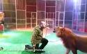 Người đàn ông liều lĩnh dùng miệng đút thức ăn cho sư tử
