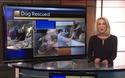 Video về chú chó may mắn Mavericks