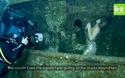 Người mẫu lặn dưới biển cùng cá mập bơi xung quanh để chụp ảnh thời trang