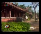 Video: Cy i c gi l ci  Thanh Ha
