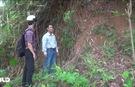 Quảng Ngãi: Người dân thấp thỏm sống chung với sạt lở núi