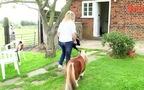 Lạ lùng chú ngựa nhỏ nhắn bằng cún trưởng thành