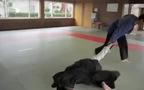 """Trận đấu như trong phim kiếm hiệp giữa võ """"Jiu jitsu"""" và """"Aikido"""""""