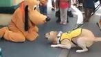Cún thích thú trước người bạn mới từ hoạt hình bước ra