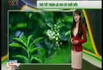 Bản tin thời tiết nông vụ - 02/3/2015