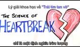 Tại sao bạn cảm thấy trái tim tan vỡ khi thất tình?