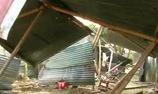 Ấn Độ: Voi hoang dã quậy phá hàng loạt căn nhà ở khu dân cư