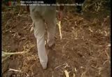 Phim tài liệu nước ngoài: Những bí mật đen tối trong hoạt động bảo tồn thiên nhiên - Tập 2