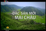 S - Việt Nam - 30/9/2014