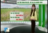 Bản tin thời tiết nông vụ - 24/5/2015