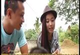 S - Việt Nam: Món quà mùa hè - Vải Thanh Hà ngọt ngào Hải Dương
