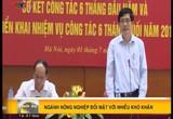 Bản tin tiếng Việt 16h - 01/7/2015