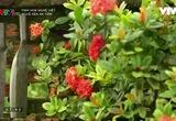 Tinh hoa nghề Việt: Nghề rèn An Tiêm