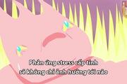 """Cận cảnh """"chân tơ kẽ tóc"""" những gì stress gây ra cho cơ thể bạn"""