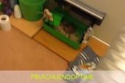 """Chuột Hamster tập Gym độc đáo khi bị nhốt trong """"nhà"""""""
