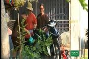 Bố ơi! Mình đi đâu thế?: Hoàng Bách, Minh Khang rửa xe