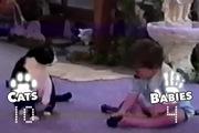 Trận đấu vật tự do giữa mèo lười và em bé