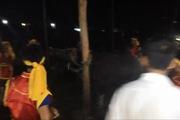 Phú Thọ: Hãi hùng lễ hội dùng búa đập vào đầu trâu đến chết