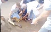 4 người đàn ông vật lộn với độ hung dữ của chó Pitbul