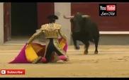 Những pha tai nạn kinh hoàng tại lễ hội đấu bò Tây Ban Nha năm 2014