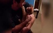 Mèo cũng biết hát đấy nhé...