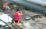Tai nạn thót tim tại hồ cá sấu