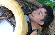 Mát-xa trăn ở Philippines