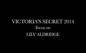 Ngắm siêu mẫu Lily Aldridge đẹp hoàn hảo trong show diễn Victoria's Secret