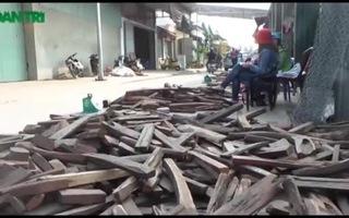 Chợ gỗ trắc vụn độc đáo ở Bắc Ninh